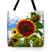 Field Day Tote Bag