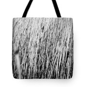 Field Grasses Tote Bag