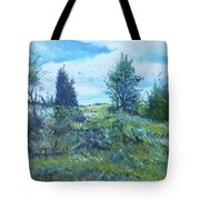 Field In The Langeberg Western Cape South Africa 2016 Tote Bag