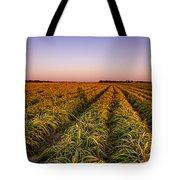 Field Lines Tote Bag