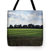 Field Near Coswig Tote Bag