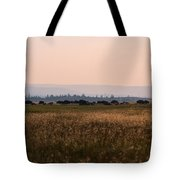 Field Of American Bison  Tote Bag