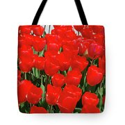 Field Of Brilliant Red Tulip Flowers In A Garden Tote Bag