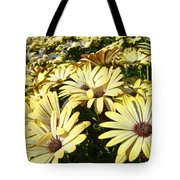 Field Of Daisies Landscape Floral Art Prints Daisy Baslee Troutman Tote Bag