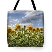 Field Of Dreams Panorama Tote Bag