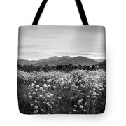 Field Of Flowers In Black And White Tote Bag