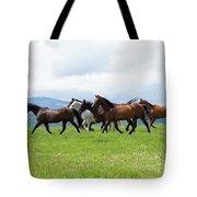Field Of Horses Tote Bag