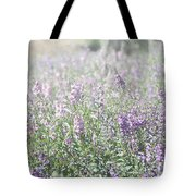 Field Of Lavender Flowers Tote Bag by Beverly Cazzell
