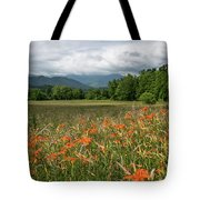Field Of Orange Daylilies Tote Bag