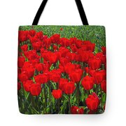 Field Of Red Tulips Tote Bag