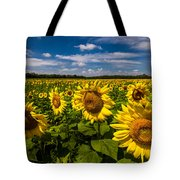 Field Of Sun Tote Bag by Ron Pate