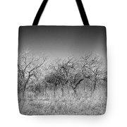 Field Of Trees Tote Bag