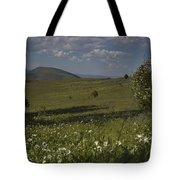 Field Of White Flowers Tote Bag