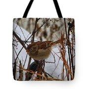 Field Sparrow Tote Bag