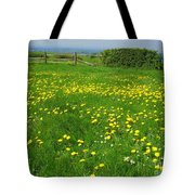 Field With Yellow Flowers Tote Bag