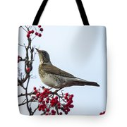 Fieldfare - 2 Tote Bag