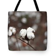 Fields Of Cotton Tote Bag