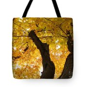 Fields Of Gold Above Our Heads Tote Bag