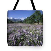 Fields Of Lupine And Owl Clover Tote Bag