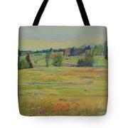 Fields Of Texas Wildflowers Tote Bag