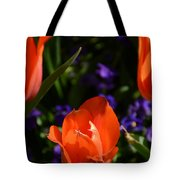 Fiery Colored Tulips Tote Bag