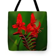 Fiery Lucifer Tote Bag