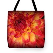 Fiery Red And Yellow Dahlia Tote Bag