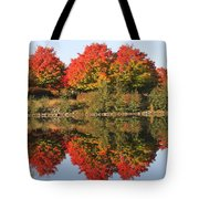 Fiery Reflections Tote Bag