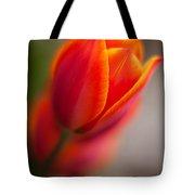 Fiery Tulip Tote Bag
