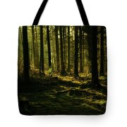 Fighting For Light Tote Bag