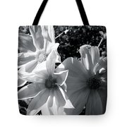 Fighting For The Sun Tote Bag