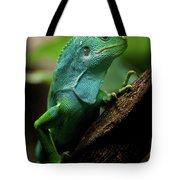 Fiji Iguana In Profile On Tree Branch Tote Bag