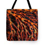 Fiji Red Seafan Tote Bag