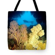 Fiji Underwater Tote Bag by Dave Fleetham - Printscapes