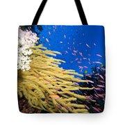 Fijian Reef Scene Tote Bag