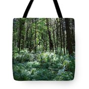 Filtered Forest Sunlight In Oregon Tote Bag