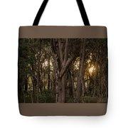 Filtered Sunlight Tote Bag