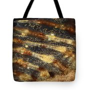 Fin Of Shorthorn Sculpin Tote Bag
