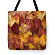 Final Fall In File Tote Bag