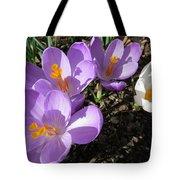 Finally Spring Tote Bag
