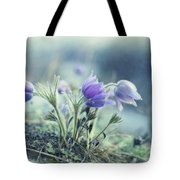 Finally Spring Tote Bag by Priska Wettstein