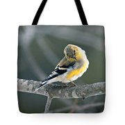 Finch Courtsy Tote Bag