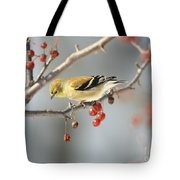 Finch Eyeing Seeds Tote Bag