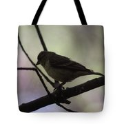 Finch Shadow 042814a Tote Bag