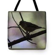 Finch Shadow 042814b Tote Bag
