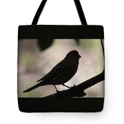 Finch Shadow 042814d Tote Bag
