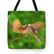 Finches In Motion I  Tote Bag