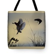 Finches Silhouette With Leaves 5 Tote Bag