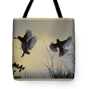 Finches Silhouette With Leaves 6 Tote Bag