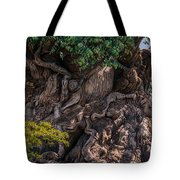 Find Animals... Tote Bag